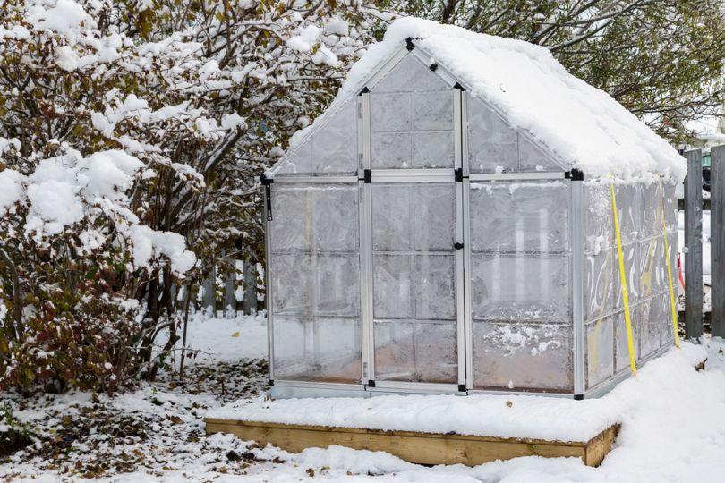 Температура в зимней теплице