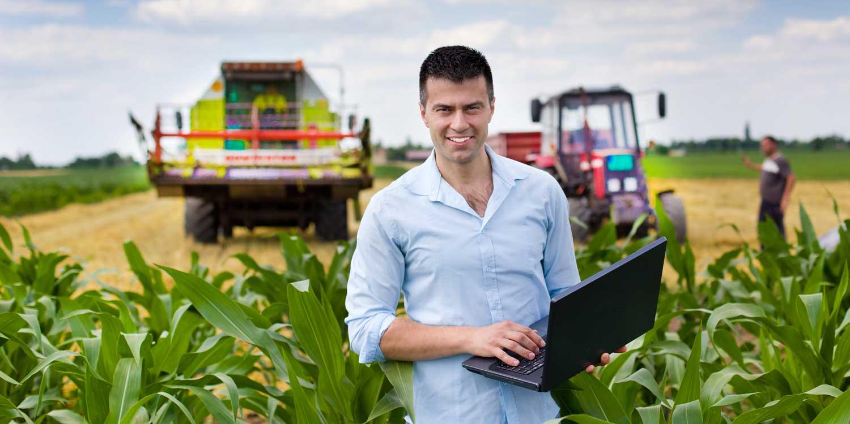 сельскохозяйственные культуры выращивают