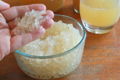 Индийский рисовый гриб. Рисовый гриб полезные свойства. Как вырастить рисовый гриб, как хранить. Свойства индийского морского риса, отзывы врачей, как приготовить, как применять