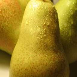 Зимние сорта груш: названия, виды, отзывы. Зимние сорта груш для Подмосковья