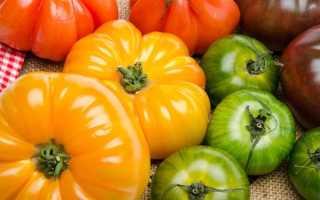 Лучшие сорта желтоплодных томатов
