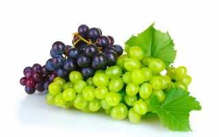 Лучшие 10 сортов винограда