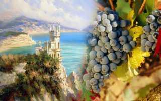 Лучшие сорта вин крыма