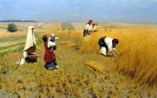 Какие сельскохозяйственные культуры выращивали славяне?