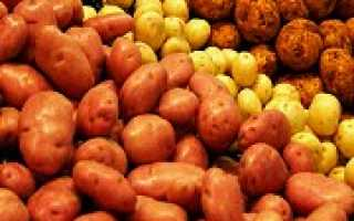 Лучшие столовые сорта картофеля
