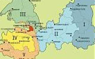 Что можно выращивать на даче в ленинградской области?
