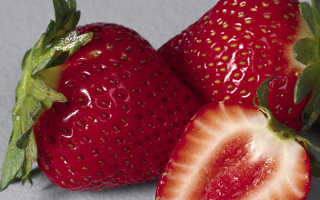 Какие фрукты можно выращивать дома