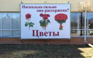 Продолжи текст люди с давних времен выращивали розы