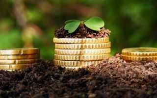 Что наиболее выгодно выращивать в сельском хозяйстве?