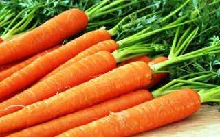 Морковь хороший сорт