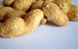 Как правильно выращивать арахис в домашних условиях?