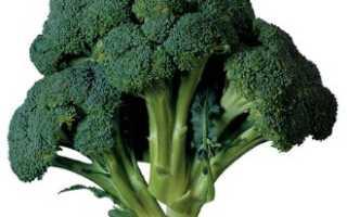 Как выращивать капусту брокколи и цветную капусту?