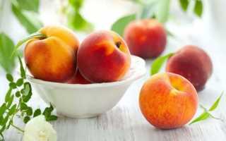 Как выращивать персик из косточки в домашних условиях?