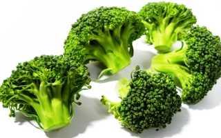 Как правильно выращивать брокколи в открытом грунте?