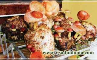 Грибы шиитаке как выращивать в домашних условиях