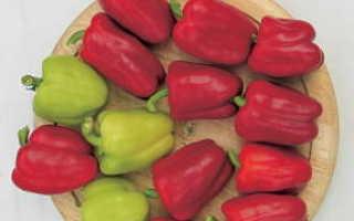 Лучшие сорта скороспелых перцев