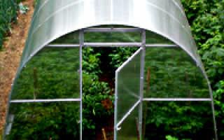 Где лучше выращивать овощи в теплице или в открытом грунте