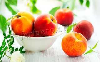 Лучший сорт персика