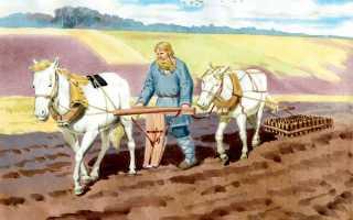 Как наши предки хлеб выращивали демонстрационный материал?