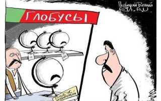Белорусы научились выращивать мандарины не сажая их