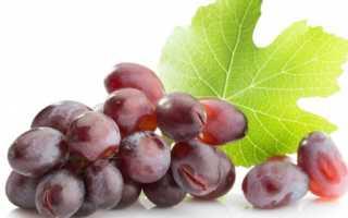 Лучшие сорта винограда павловского