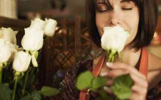Выращивать цветы в домашних условиях
