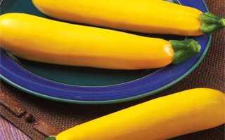 Лучшие сорта желтых кабачков