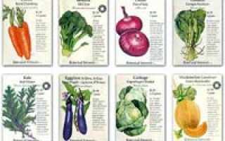 Лучшие сорта семян овощей