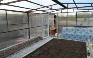 Как правильно выращивать огурцы в зимней теплице?