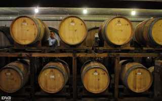 Какие сорта винограда выращивают в краснодарском крае?
