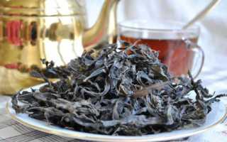 Как выращивать иван чай в промышленных масштабах?
