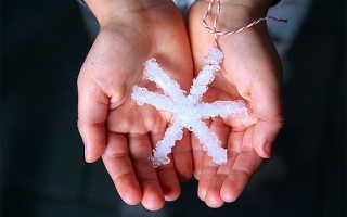 Как выращивать кристалл в домашних условиях из соли?