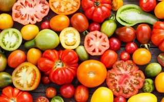 Лучшие сорта голландских помидор